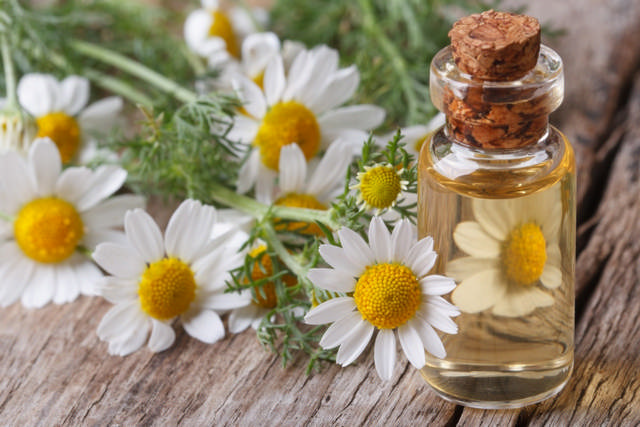 Chamomile serum - for normal and combination skin