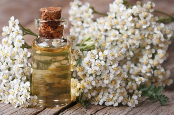 Yarrow serum - for sensitive skin
